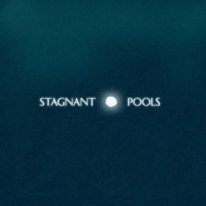 stagnant-pools-temporary-room