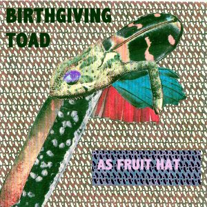 Birthgiving_Toad_-_As_Fruit_Hat_artwork